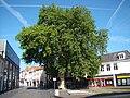 Bergen op Zoom 2010 06- 006.JPG