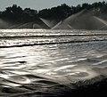 Bewässerung der Spargelfelder - panoramio.jpg