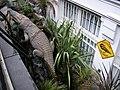 Beware Crocs^ - geograph.org.uk - 1307227.jpg