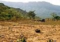 Bibala, landscape-1.jpg