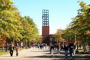 Binghamton University cover