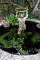 Bird bath and pond Quex House Birchington Kent England.jpg