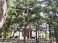 Biserica Izvorul Tamaduirii Intrare1.jpg