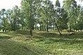 Björkö-Birka - KMB - 16000300020475.jpg