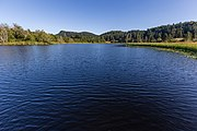 Blackburn Lake, Saltspring Island, British Columbia, Canada 04.jpg