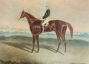 Blair Athol (horse) - Image: Blair Athol 2