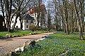 Blausterne (Scilla) am Schloss Schlettau 2H1A2207WI.jpg