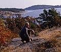 Blomberg vid klippa.jpg