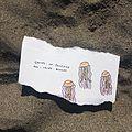 Blooms of jellyfish.jpg