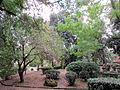 Borgo pinti, giardino del borgo 05.JPG