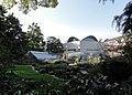 Botanischer Garten der Universität Basel 2012-10-02 Mattes.jpg