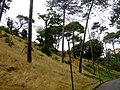Bournemouth - panoramio - Dawid Glawdzin (3).jpg