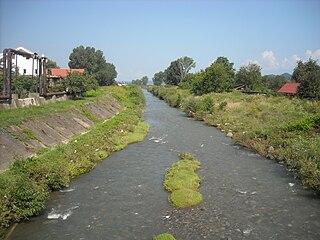 Crișul Alb river in Romania