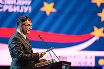 Branislav Lecic 2010.jpg
