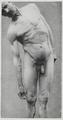Braus 1921 278.png