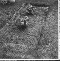 Brian's grave august 1969.tif