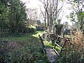 Bridge and path - geograph.org.uk - 1567695.jpg