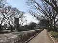 Bridgestone Street in Kurume, Fukuoka 4.jpg