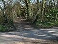 Bridleway at Margery Grove - geograph.org.uk - 370209.jpg