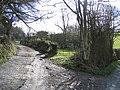 Bridleway to Bwlch y Groes - geograph.org.uk - 355806.jpg