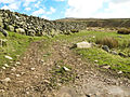 Bridleway to Corney Fell - geograph.org.uk - 736840.jpg
