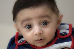 British-Pakistani Kid17.jpg