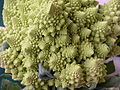 Broccoli DSCN4575.jpg