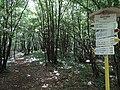Bukový vŕšok - Directional board - panoramio.jpg