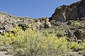 Butcher Jones Trail, Burro Cove and Beyond, Tonto National Park, Arizona - panoramio (51).jpg