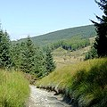 Byway to Strata Florida, Powys - geograph.org.uk - 1571313.jpg