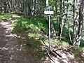 CAI 101-105 Monte Pianaccetto-1 Segnavia.jpg