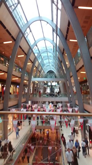 Shopping addiction - Huge malls become places to stay and ramble, show the use of shopping as a leisure activity.
