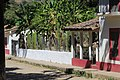 Cactus Hedge in Copala - panoramio.jpg