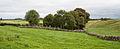 Caldragh Graveyard 2014 08 29.jpg