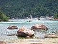 Caminho para a Praia Preta - panoramio.jpg