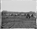 Camp of the 67th N.Y. Inf (4153073415).jpg