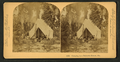 Camping in Palmetto Forest, Florida, by Littleton View Co. 5.png
