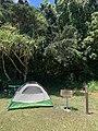 Campsite 4 at Kipahulu Campground, 2020 (53f42f42-f1da-4290-a786-8b94a0ebe357).jpg