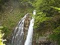 Cascada Urlătoarea 2 - panoramio.jpg