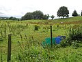 Castletown Townland - geograph.org.uk - 1411602.jpg