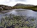 Ceann Airigh an Obain - geograph.org.uk - 856109.jpg