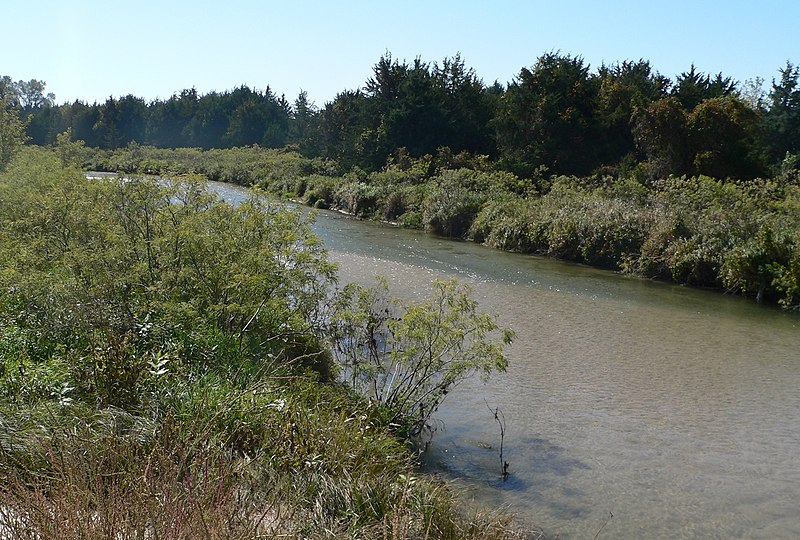 File:Cedar River at NE91-70 DS.JPG