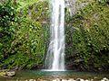 Chûtes moreau (PN Guadeloupe).jpg