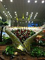 Changi Airport flowers.jpg