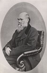 Charles Darwin photograph by Ernest Edwards, 1867.jpg