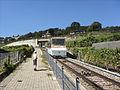 Chemin de fer funiculaire Vevey–Mont Pèlerin - 2010-08-09 - 17.jpg