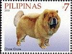 Chow-Chow-Canis-lupus-familiaris 2010.jpg
