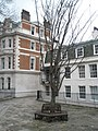 Circular seat within Gray's Inn - geograph.org.uk - 1656206.jpg