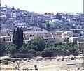 Citadelle Hasbaya.jpg