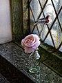 City of London Cemetery Columbarium Rose in a bottle 1.jpg